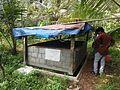 Home Vermicompost Thrissur DSCN2713.jpg