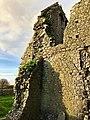 Hore Abbey, Caiseal, Éire - 46585767991.jpg