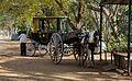 Horse Cart (13367975415).jpg