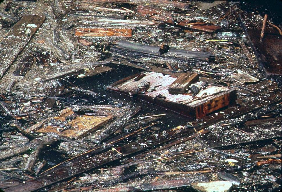 Hudson River debris