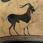 Hydrie Athènes Attr Psiax Bouc Petit Palais 13012018 2.jpg