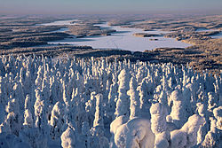 IIjärvi from Iivaara in winter.jpg