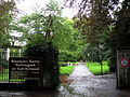 IMG 7914-Rombergpark.JPG