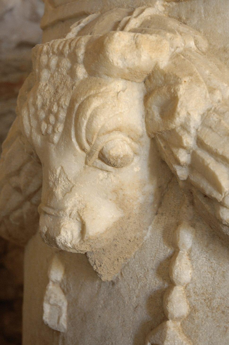 Iasos museum 5430