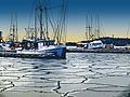 Iced In Harbor StJames Nov16.jpg