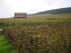 Image illustrative de l'article Chambertin