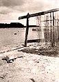 Ile-Tudy , fillets séchant sur la grève de la petite cale - 1959.jpg