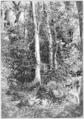 Illustration facing page 479, Folk-lore, volume 4, 1893.png