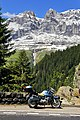 In primo piano il mio grande amore ( GIANNA ) - panoramio.jpg