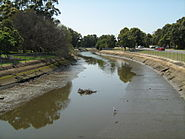 Iron Cove Creek at Timbrell Park, Five Dock