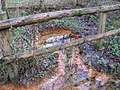 Iron mineral spring near Balcombe - geograph.org.uk - 1620942.jpg