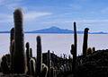 Isla inca Huasi (2).jpg