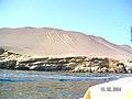 Islas Ballestas - panoramio (14).jpg