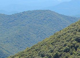 Jacks Knob viewed from Brasstown Bald.jpg