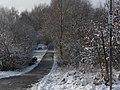 Jakobs-Pilgerweg auf dem Kolonnenweg der DDR-Grenztruppen. In Höhe der kriegszerstörten und immer noch nicht wiedererrichteten Fritz-Schweitzer-Brücke (rechts vom Bildrand) - panoramio.jpg