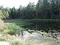 Jančiūnai, Lithuania - panoramio.jpg