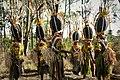 Jimi Beetle heads. Jimbosi Sing Sing Group (48897992762).jpg