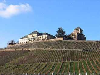Rheingau (wine region) - Schloss Johannisberg is one of the best known historical important domaines in Germany. It is famous as an early adopter of the Riesling grape varietal, and as the site where the German form of noble rot was discovered by accident.