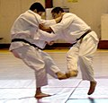 Judo foot sweep - cropped.jpg