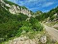 Kanjon Belog Rzava - panoramio (2).jpg