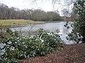 Keeper's Pool - geograph.org.uk - 1746616.jpg