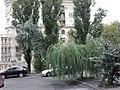 Kiev. August 2012 - panoramio (307).jpg