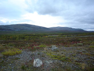 Enontekiö - In the northern area of the municipality, the vegetation is very sparse.