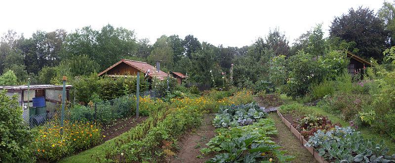 Kleingärten Am Rohns