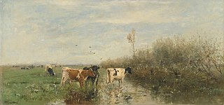 Vaches dans un pré détrempé