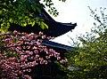 Kyoto To-ji Kondo 10.jpg