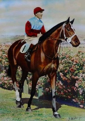 Victoria Derby - Image: LUCRATIVE 1940 VRC DERBY MAURICE Mc CARTEN
