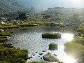 Lac glaciar - panoramio (1).jpg