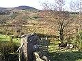 Laghty Barr - geograph.org.uk - 1118328.jpg