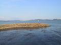 Lago Trasimeno 10.JPG