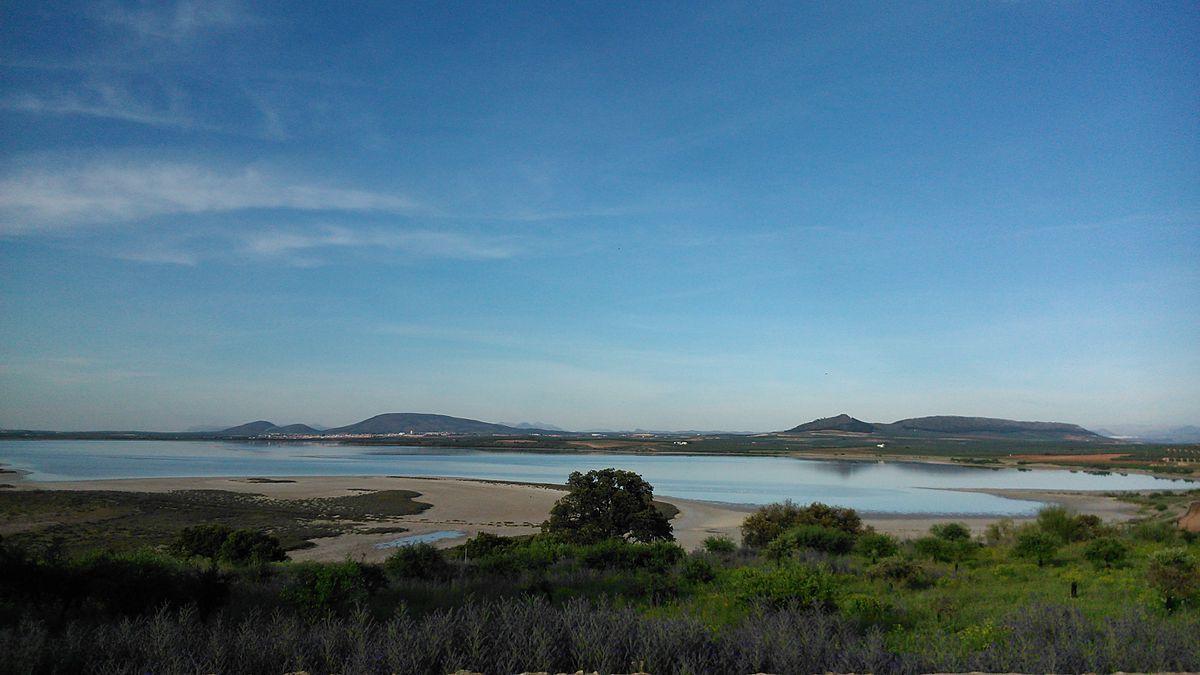 Reserva natural laguna de fuente de piedra wikipedia la - Fuentes de piedra natural ...