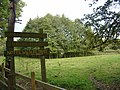 Lambley Reed Pond - geograph.org.uk - 1013702.jpg