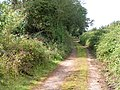 Lane now just a footpath near Redhayes - geograph.org.uk - 969350.jpg