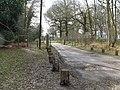 Lane to Steepwood Farm - geograph.org.uk - 1194219.jpg