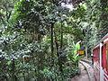 Lascar Cog train to Cristo Redentor (4551178965).jpg
