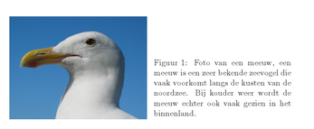 Latex voorbeeld figuren sidecaptions.png