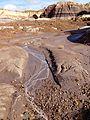Lavender streams (16295104626).jpg
