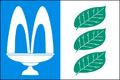 Libnic CZ flag.png