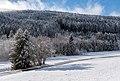Liebenfels Zojach Winterlandschaft 12012016 0020.jpg