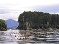 Line4306 - Flickr - NOAA Photo Library.jpg