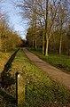 Linford Wood footpath, Milton Keynes - geograph.org.uk - 1208018.jpg