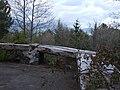 Linguaglossa-Etna-Volcano-Sicily-Italy - Creative Commons by gnuckx (3495514623).jpg