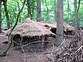 Linked Pair of Huts, Medieval Village, Thunderdell Wood, Ashridge - geograph.org.uk - 1387211.jpg