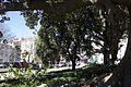 Lisbon (33349052870).jpg