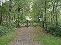 Liss Riverside Railway Walk, Liss Forest, Hampshire - geograph.org.uk - 57210.jpg