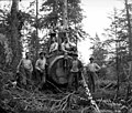 Loggers in the woods, Lester Logging Company, near Montesano, ca 1915 (KINSEY 1964).jpeg